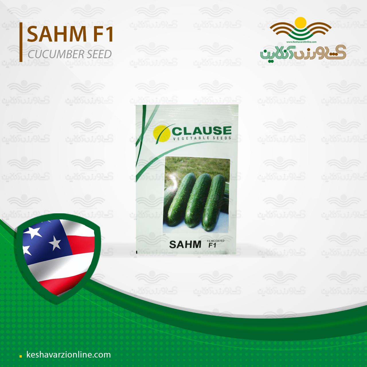 بذر خیار گلخانهای هیبرید سهم از شرکت کلوز آمریکا