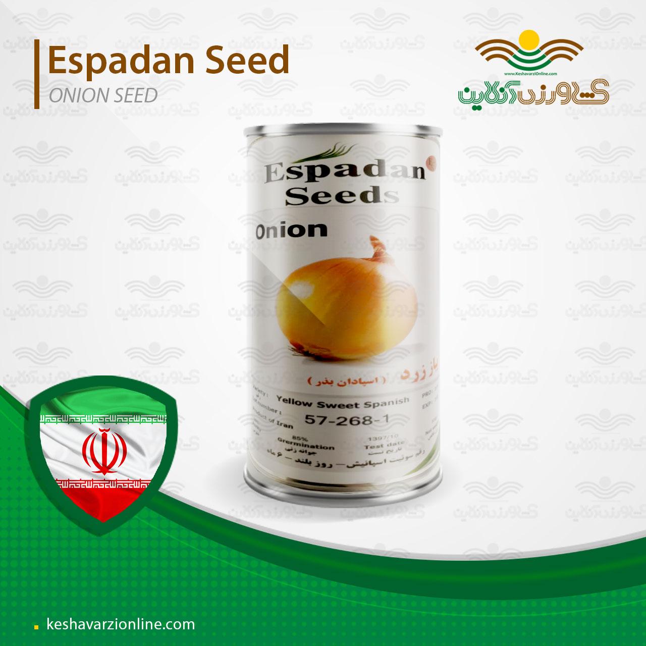 بذر پیاز زرد روز بلند سوییت اسپنیش شرکت اسپادان بذر ایران