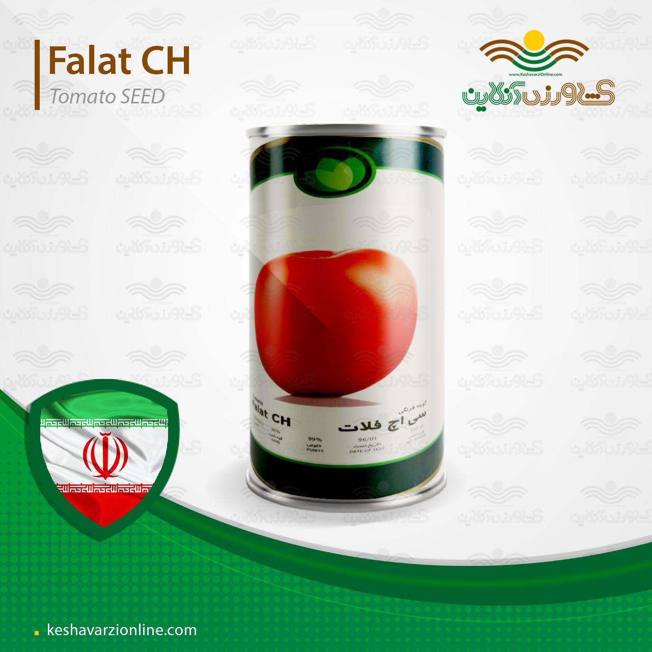 بذر گوجه فرنگی سی اچ فلات نیم کیلویی