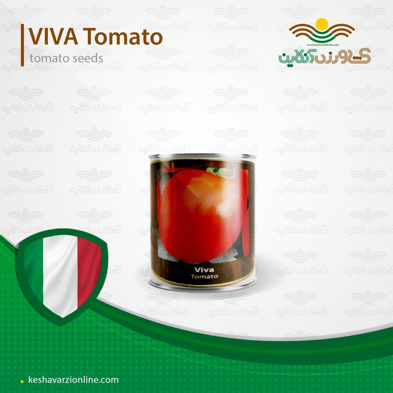 بذر گوجه فرنگی ویوا کانیون ایتالیا 200 گرمی