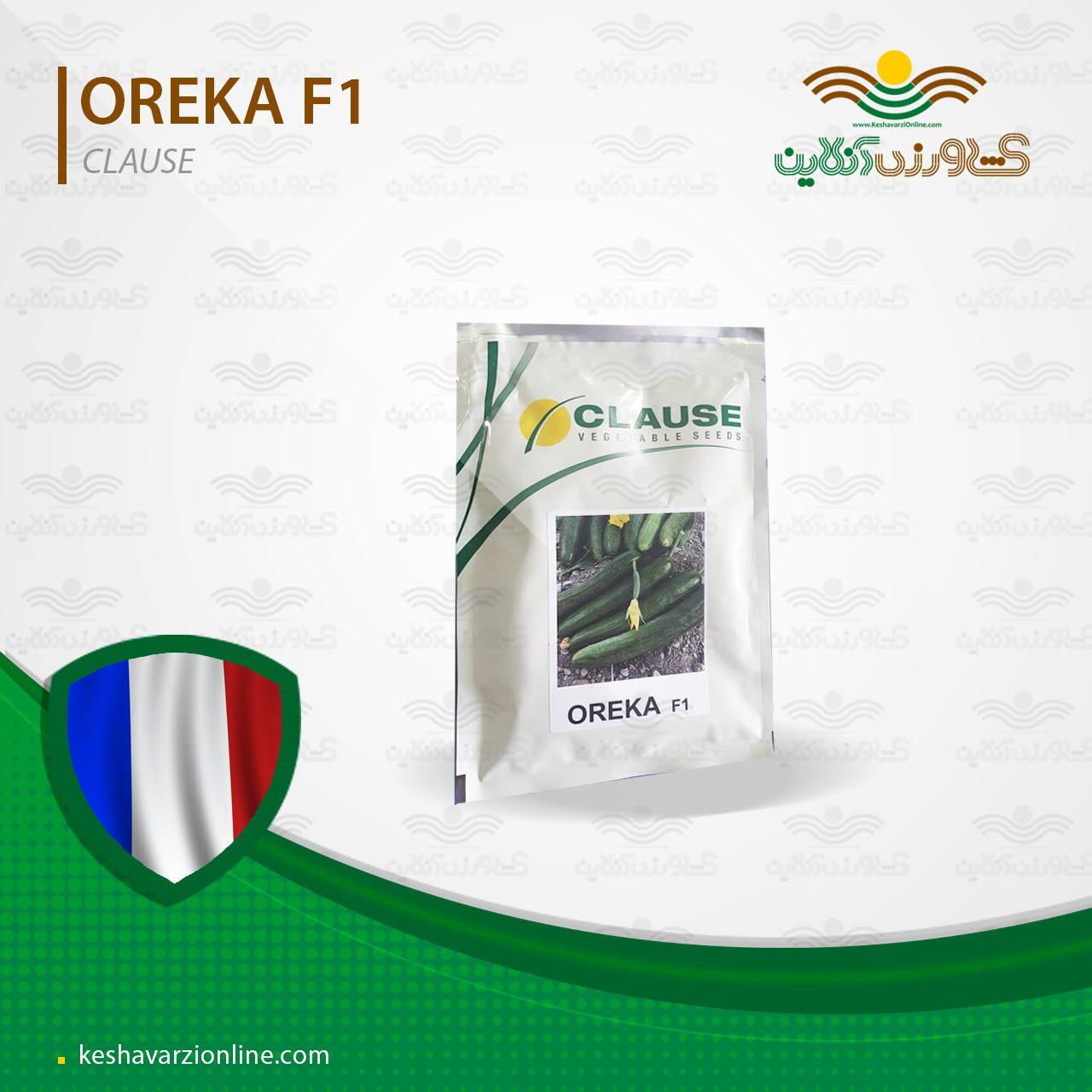 بذر خیار اورکا صد در صد گل ماده پربار و اف یک