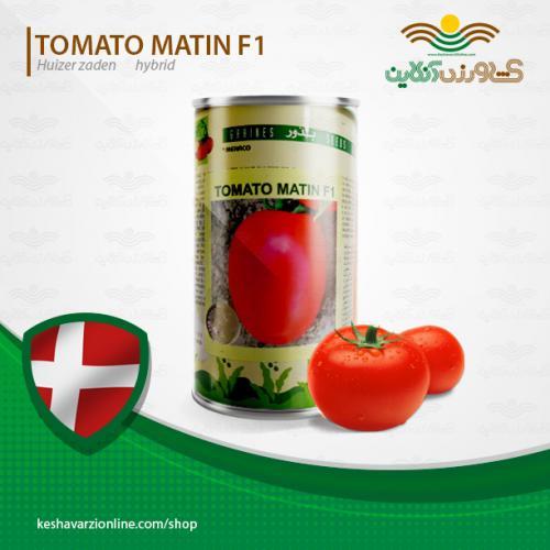 بذر گوجه فرنگی متین دانمارک