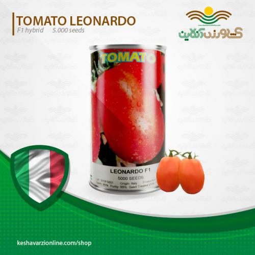 بذر گوجه فرنگی پر بار ۸۲۲ لئوناردو