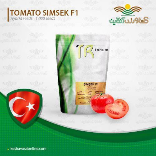 بذر گوجه گلخانه ای شمشک
