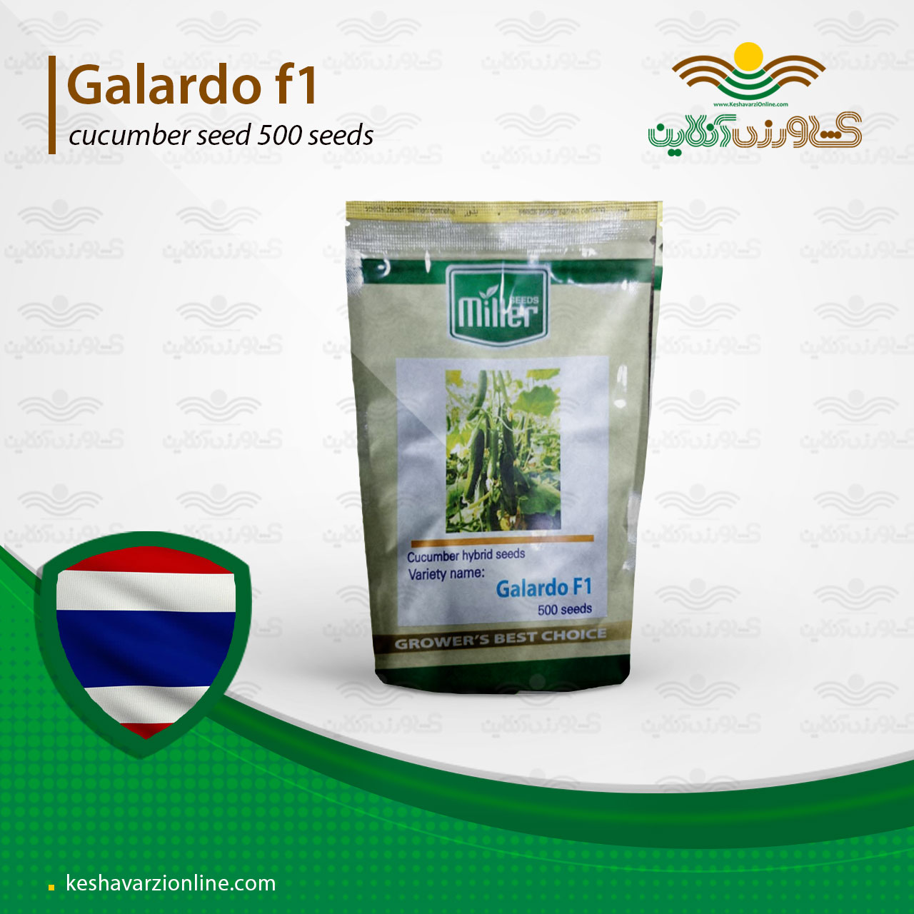 پربارترین بذر خیار گلخانه ای گالاردو مقاوم به گرما و سرما