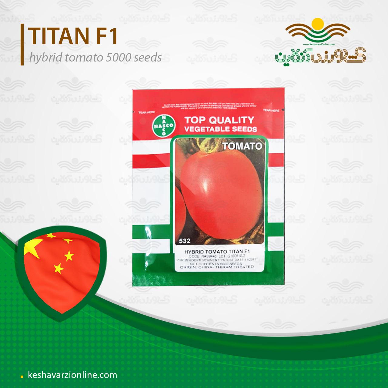 بذر گوجه فرنگی تیتان هیبرید پربار با قیمت بسیار مناسب