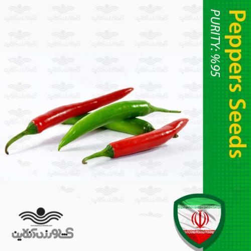 بذر فلفل کبابی