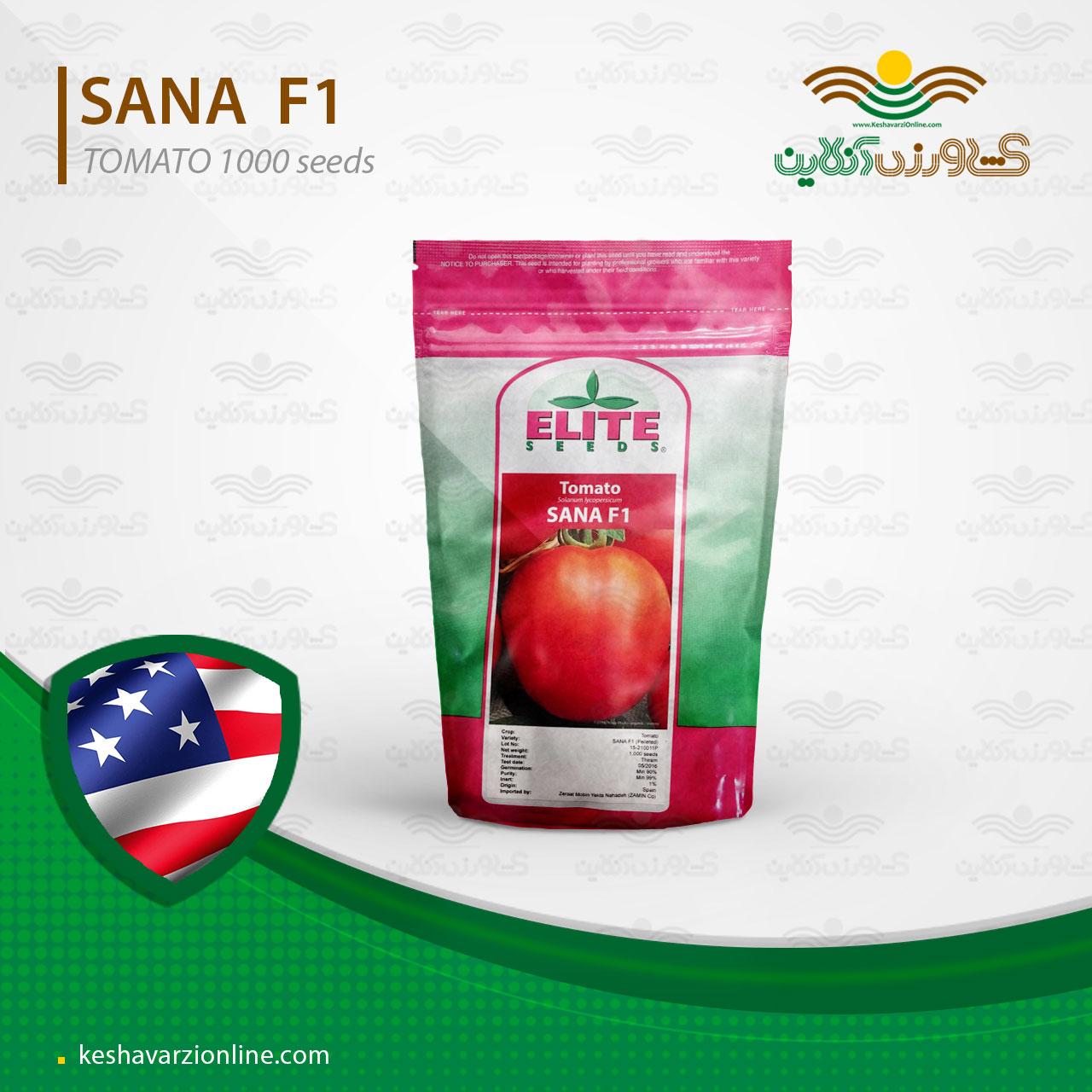 بذر گوجه پربار و زودرس ثنا