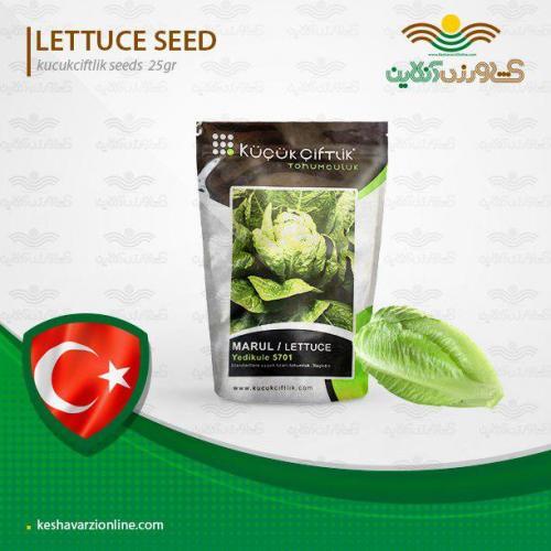 بذر کاهو پیچ خارجی و روش کاشت کاهو