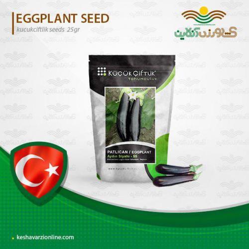 بذر بادمجان قلمی ترک و روش کاشت بادمجان