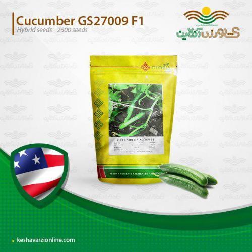 بذر خیار 009 پر محصول و زودرس اف یک جنیسس گلوریا
