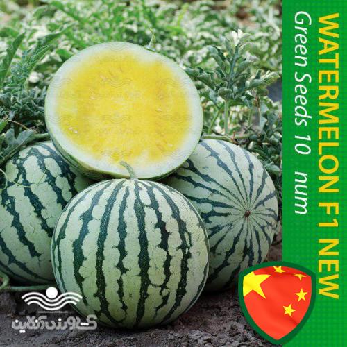 بذر هندوانه زرد آناناسی میوه ای خاص و لاکچری خانگی