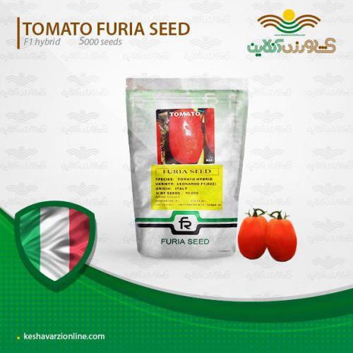 بذر گوجه فرنگی لئوناردو ایتالیایی بدون پلت