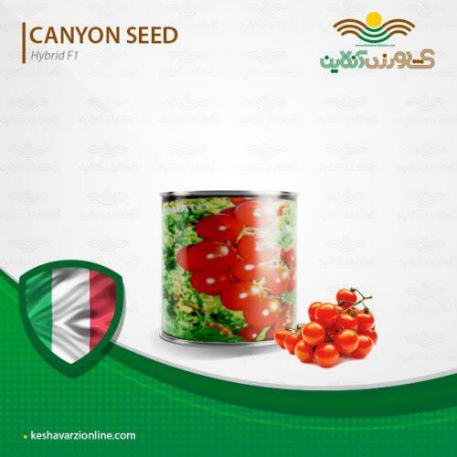 بذر گوجه چری گیلاسی کنیون ایتالیا و نحوه کاشت گوجه چری
