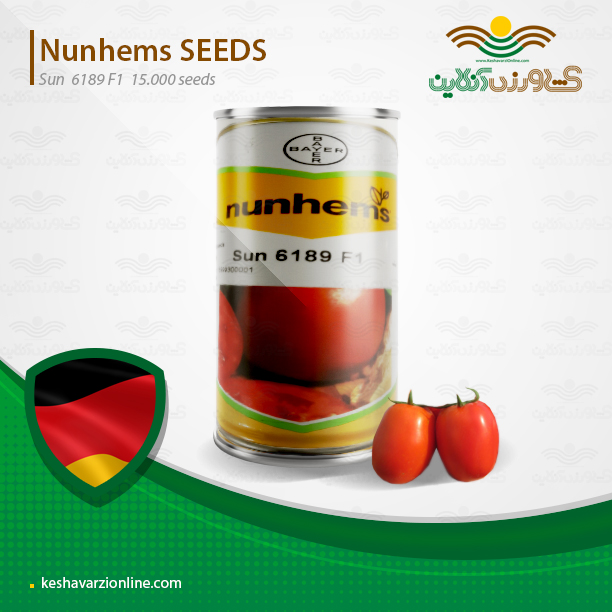 بذر گوجه فرنگی سانسید 6189