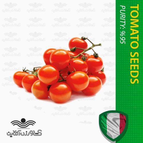 بذر گوجه چری گیلاسی در بسته بندی خانگی و نحوه کاشت