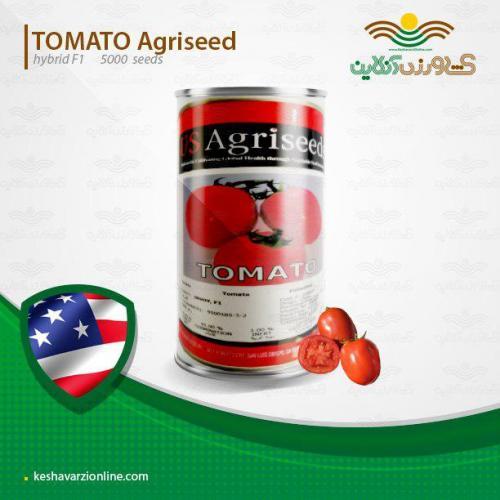 بذر گوجه فرنگی اینوی آمریکا بسیار خوشرنگ و بازارپسند