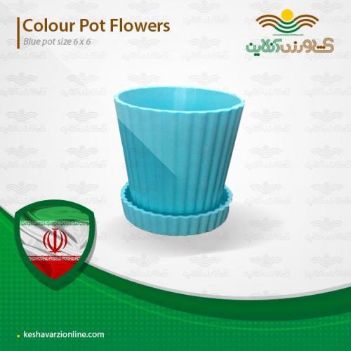 گلدان مخصوص کاکتوس آبی