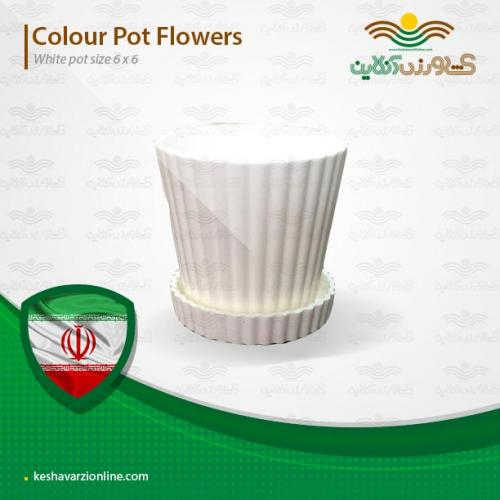 گلدان مخصوص کاکتوس سفید