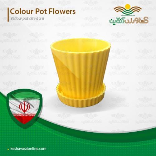 گلدان مخصوص کاکتوس زرد