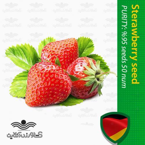 بذر توت فرنگی کاویتا و روش کاشت توت فرنگی