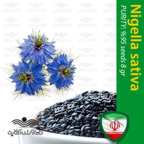 بذر سیاهدانه و روش کاشت
