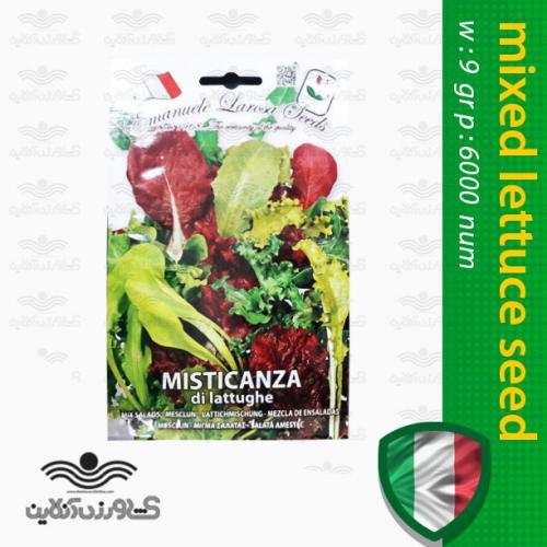 بذر سبزیجات سالاد ایتالیایی