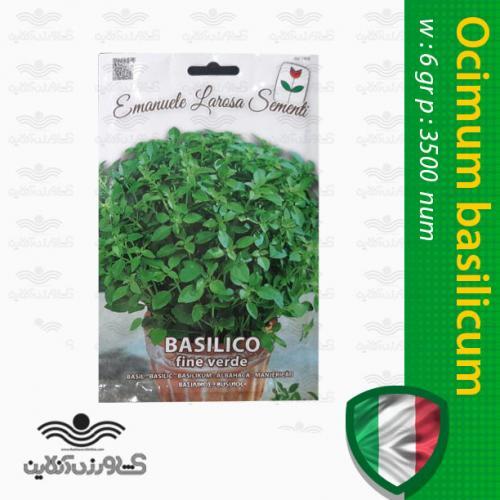 بذر سبزی ریحان برگ درشت ایتالیایی و نحوه کاشت ریحان