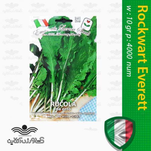 بذر سبزی راکولادا اورت ایتالیایی