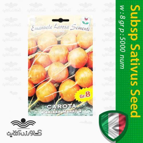 بذر هویج نارنجی گرد ایتالیایی و روش کاشت هویج