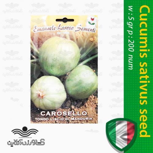 بذر خیار سیبی ایتالیایی و روش کاشت خیار سیبی