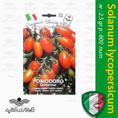بذر گوجه فرنگی چری داترینو ایتالیایی و روش کاشت گوجه