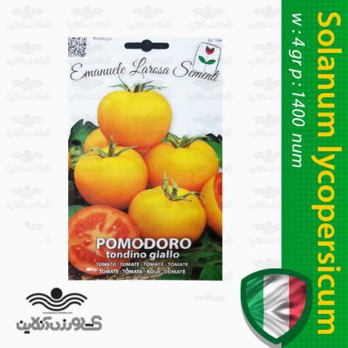 بذر گوجه فرنگی زرد طلایی ایتالیایی و روش کاشت گوجه فرنگی