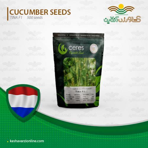 بذر خیار گلخانه ای تینا هلندی