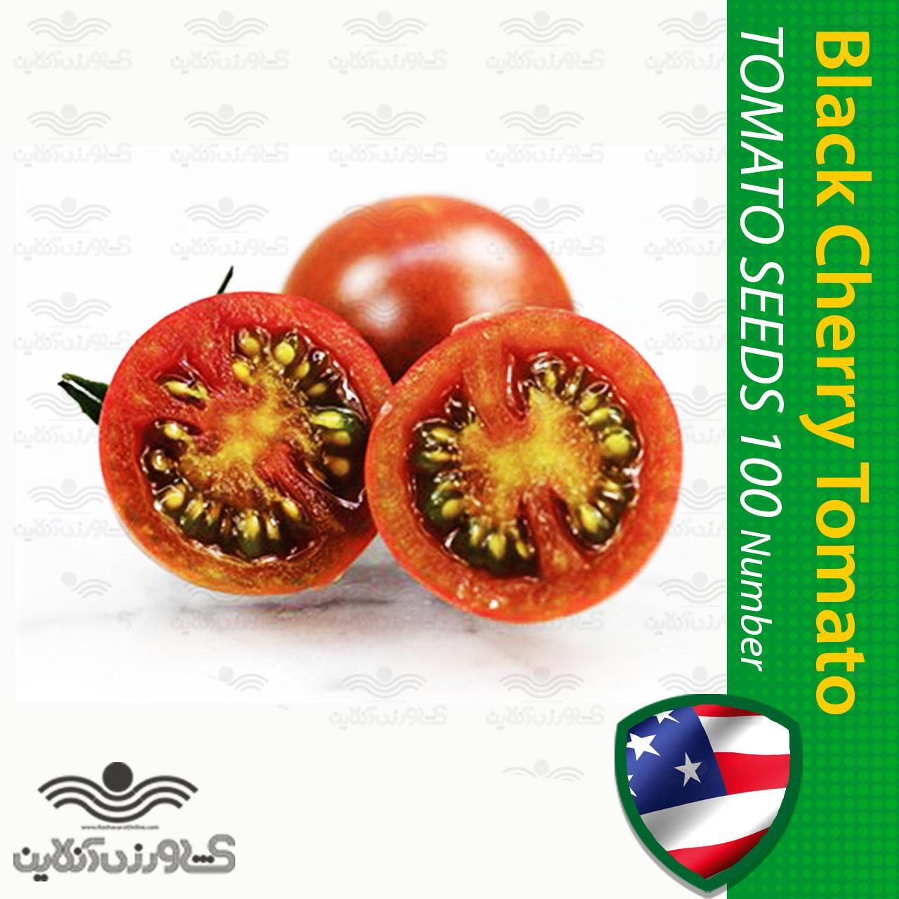 بذر گوجه گیلاسی مشکی