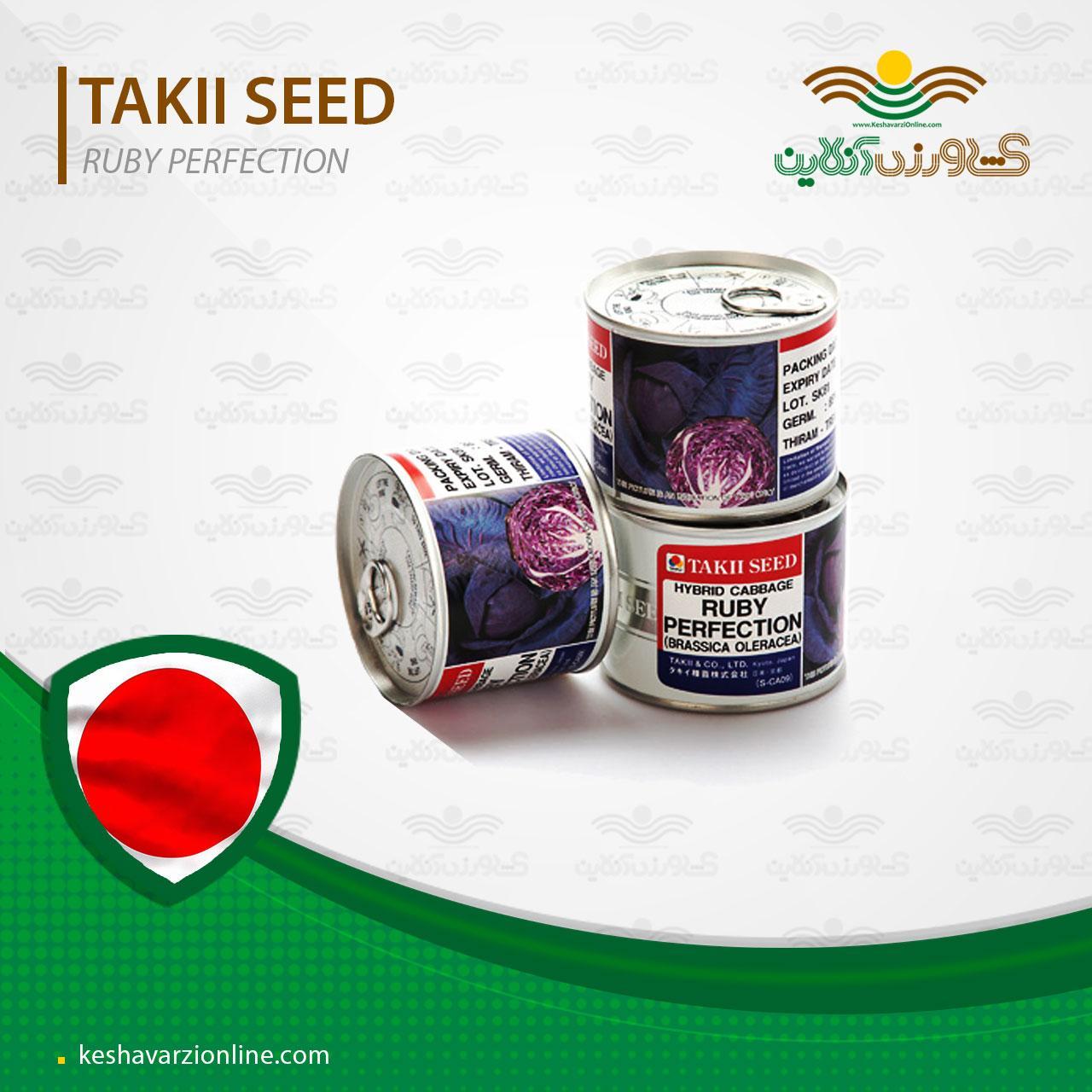 بذر کلم پیچ قرمز رابی پرفکشن تاکی ژاپن