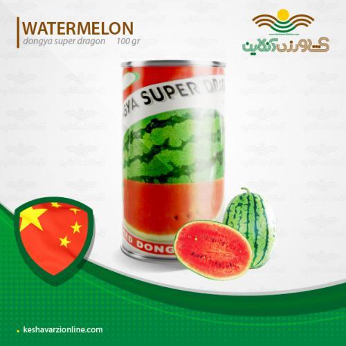 بذر هندوانه سوپر دراگون