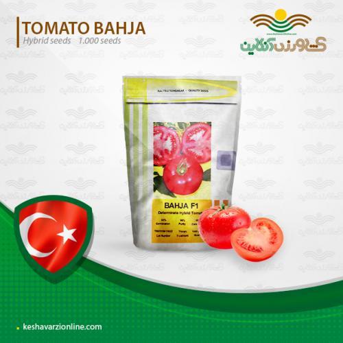 بذر گوجه گرد پر محصول بهجا یا باغچه