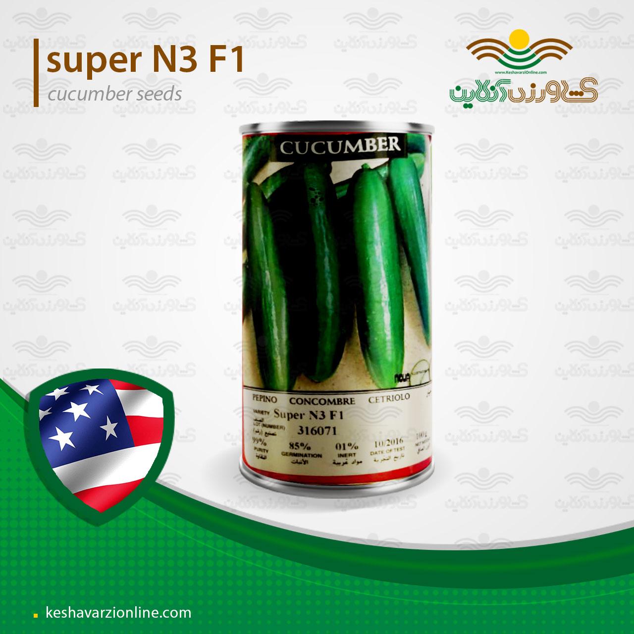 بذر خیار زمینی سوپر ان 3 هد امریکا