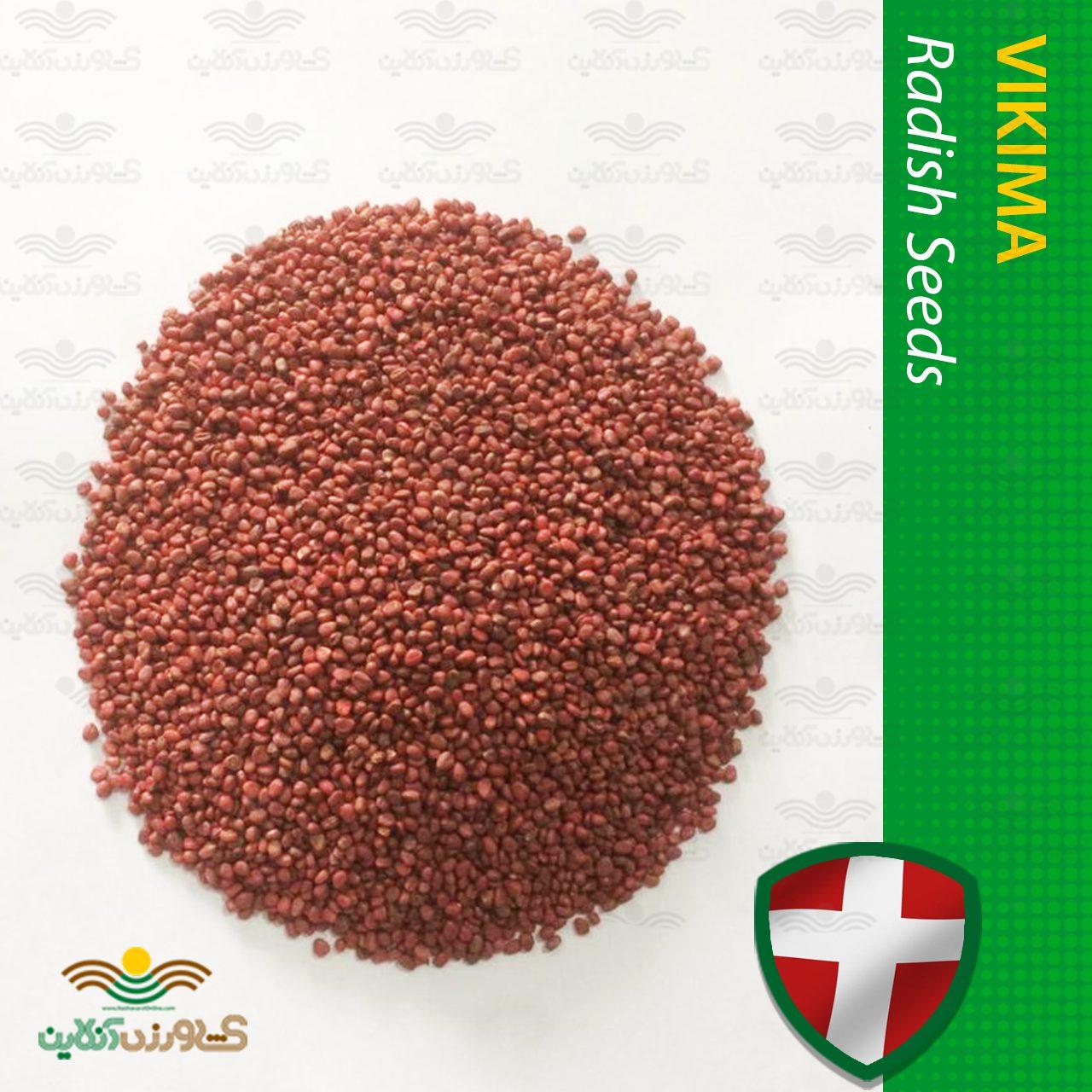 بذر تربچه ساکسا ویکیما 80 گرمی
