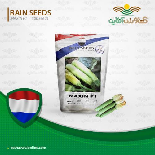 بذر کدو خورشتی پرمحصول ماکسین هلند