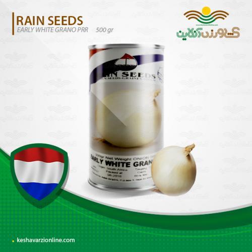 بذر پیاز سفید روز کوتاه هلندی