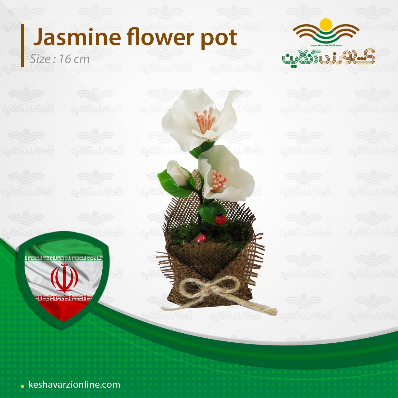 خرید اینترنتی گلدان فانتزی یاس