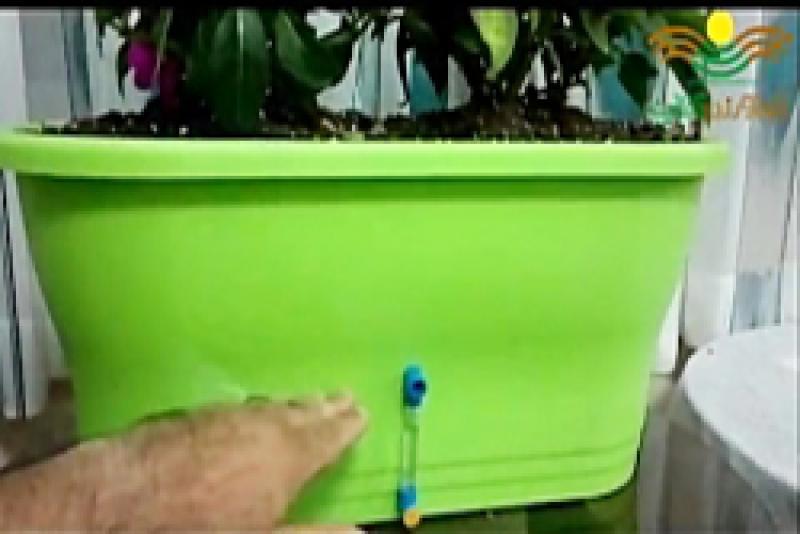 سیستم آبیاری خودکار گلدان با توجه به نیاز رطوبتی گیاه