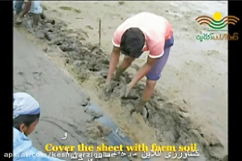 آماده سازی زمین برنج هندی