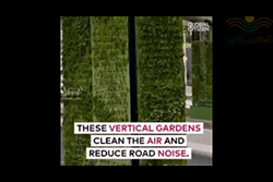 پوشش سبز عمودی برای زیباسازی، پالایش هوا، کاهش آلودگی صوتی در مکزیکو سیتی