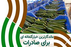 بذر خیار درختی داربستی فاریس مخصوص صادرات
